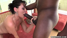 Charley Chase meets and greets Mandingo's monster black python
