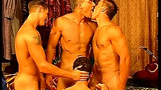 Tender foreplay is all those buddies need to begin hot banging