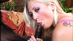 Striking blonde with perky boobs loves to have a black dick filling her tight cunt