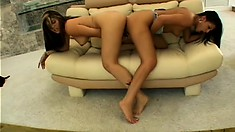 Lesbian tramps with big juicy booties get horny on their couch