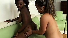Lovely ebony lesbians go down on each other and fuck like crazy