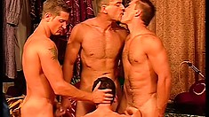 Dreamy studs in an all male harem keep each other's bodies in shape