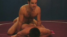 Wrestling partners finish their fighting and enjoy some assfucking