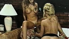 Lustful housewives Nikki and Kim take turns bouncing on a hard stick