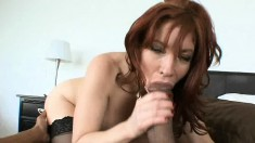 Brittany O Connell gets fucked by a big black cock and can't get it into her mouth