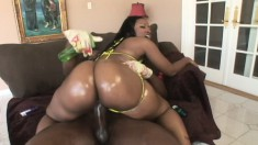 Cherokee D-ass enjoys getting her ass oiled up and showing off