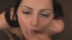 Amateur hands free close up blowjob