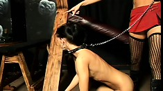Her slave has been a naughty girl and gets strung up and taught a lesson