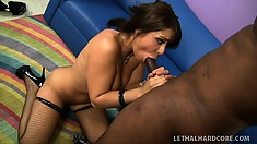 Busty brunette Beverly Hills fingers in her fishnets and gets a black tongue and dick working her snatch
