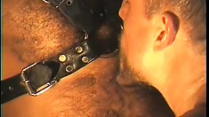 Gay boy toy gets down on his knees to pleasure his master in a cage