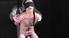 Blindfolded stud gets his ass fingered and then chews on his dick
