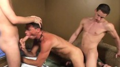Pretty guy has a pair of experienced gay studs banging his tight ass