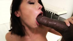 Black stallion Mandingo stuffs Adriana's lovely ass with his huge cock