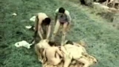 Hardcore group fucking in hot outdoor